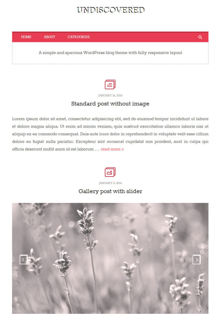 Free-Wordpress-Themes-Undiscovered