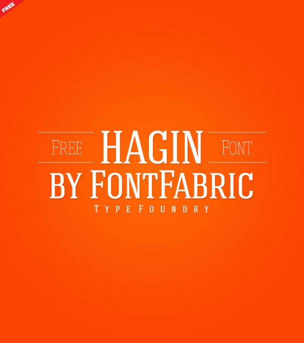 hagin-serif-free-font
