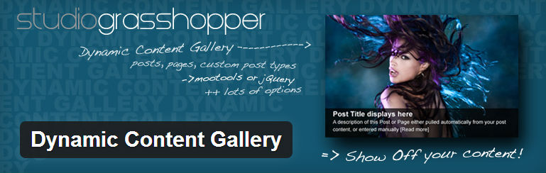dynamic-content-gallery-free-wordpress-slider-plugin(23)