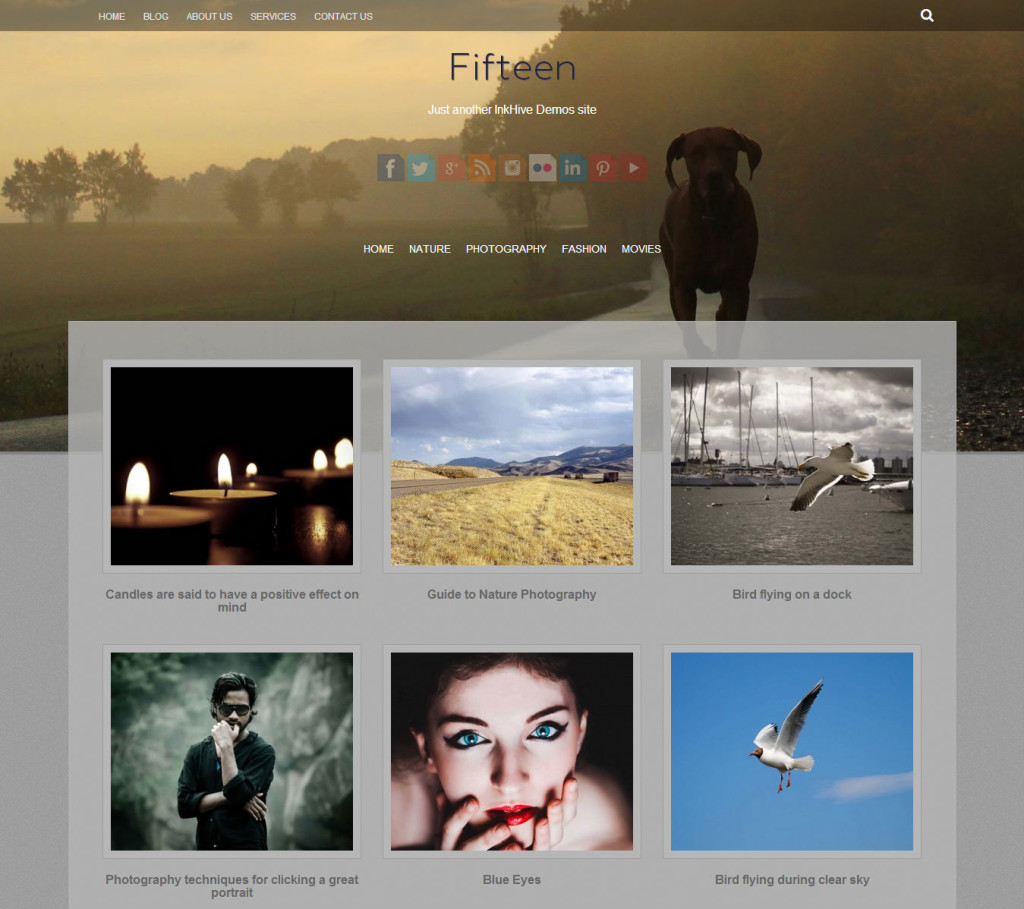 fifteen-best-free-wordpress-themes15