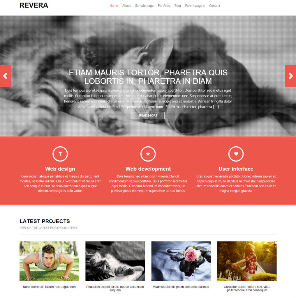 revera-best-free-wordpress-themes22