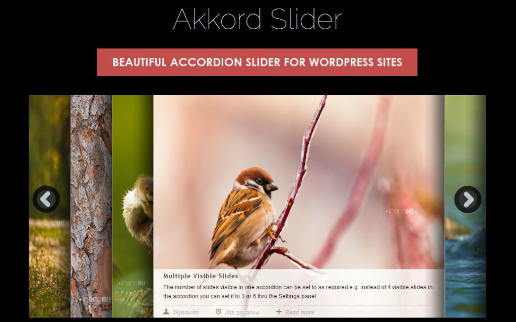 Akkord Slider - most-popular-free-and-premium-slider-plugins-for-wordpress(15)