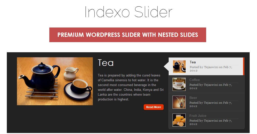 Indexo Slider - most-popular-free-and-premium-slider-plugins-for-wordpress(45)