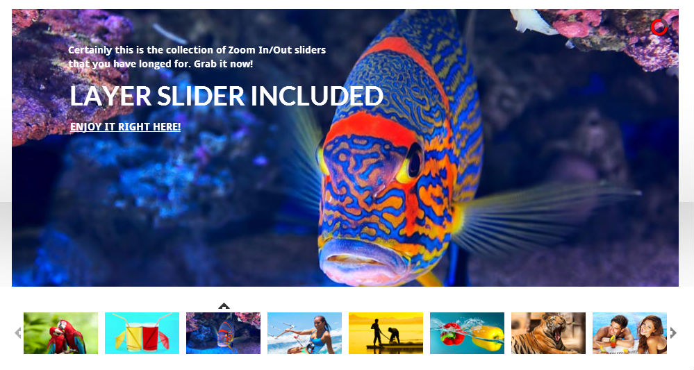 Responsive Zoom Effect Slider - most-popular-free-and-premium-slider-plugins-for-wordpress(40)