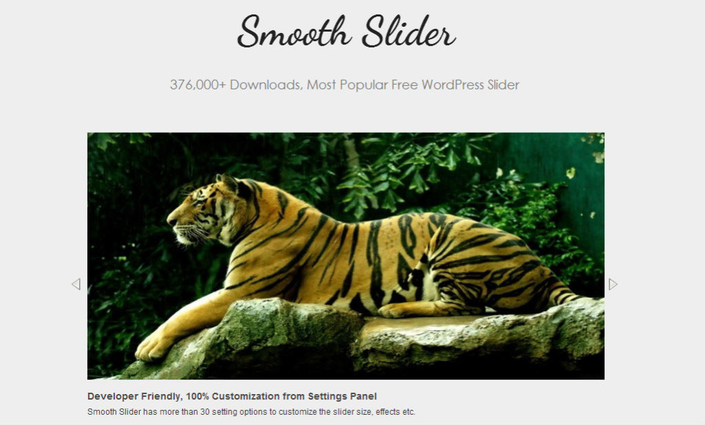 Smooth Slider - most-popular-free-and-premium-slider-plugins-for-wordpress(14)