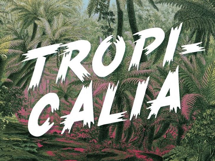 Tropicalia-free-font