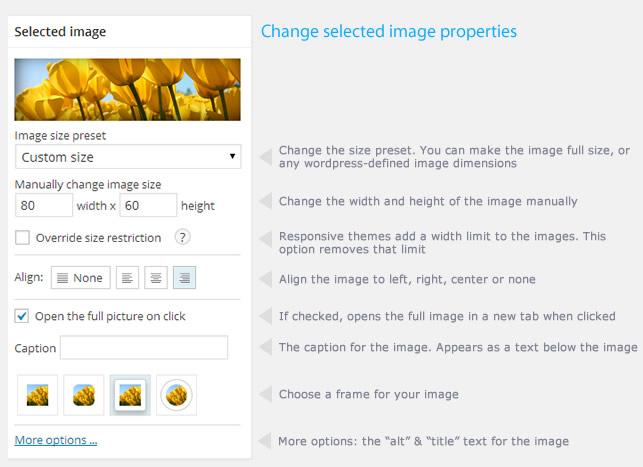 Image Pro - wordpress-image-optimization-plugin-08