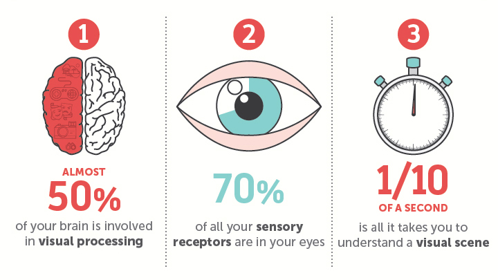 The Science Behind Why Our Brain Crave Infographics